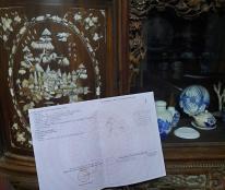 Chính chủ cần bán đất tại thôn Lam Sơn, xã Song An, huyện Vũ Thư, tỉnh Thái Bình