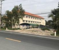Chính chủ cần bán gấp đất tại Tân Lợi –Tịnh Biên – An Giang.