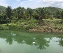Bán trang trại 13.000m2 tại Thuận Hòa, Hàm Thuận Bắc, tỉnh Bình Thuận