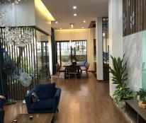 Bán biệt thự 6 khu đô thị Việt Hưng, Long Biên, diện tích 200m2 nhà đẹp thiết kế hiện đại