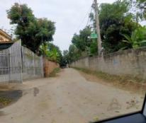Chính chủ cần bán 2 lô đất gần UBND Xã Thái Long, Thành Phố Tuyên Quang.
