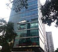 Bán tòa CH dịch vụ MT phường Tân Định, DT: 8x25m, 1 hầm, 6 lầu, thu nhập 400 tr/tháng, giá 38 tỷ