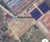 Bán 2 lô đầu ve C01 và C28 Thanh Đông, Bình Minh, Nghi Sơn, Tĩnh Gia, giá 940 triệu/lô