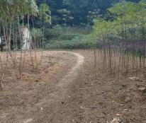 Chính chủ cần bán mảnh đất mặt tiền đường Quốc lộ 32 tại Tam Nông - Phú Thọ