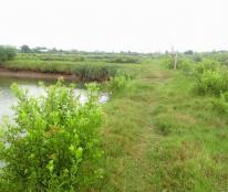 Bán hoặc thuê đất Huyện Thạnh Phú, Bến Tre 23.400m2,