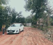 Chính chủ cần bán lô đất mặt tiền tại Tam Dương, Vĩnh Phúc