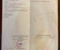 Chính chủ cần bán lô đất tại Sơn Đồng, Kim Long, Tam Dương, Vĩnh Phúc