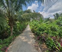 Bán nền 361m2 Nhơn Phú, Mang Thít, Vĩnh Long