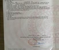 Chính chủ cần bán gấp mảnh đất địa chỉ: Đội 6, thôn Việt Yên, xã Đông Yên, huyện Quốc Oai, Hà Nội