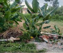 Chính chủ cần bán nhanh lô đất Tam Ngọc, Tam Kỳ, cách TTTP 1km