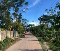 Đất nền sát trục đường 33 Trần Phú, gần KCN Trảng Nhật, đường 5m