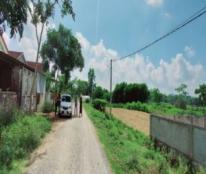 Chính chủ cần bán đất tại vùng Vệ Bảng - Xóm Tân Thịnh - Xã Thịnh Thành - Huyện Yên Thành