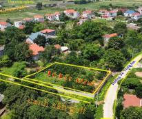 Chính chủ cần bán lô đất 2 mặt tiền đẹp vị trí đắc địa tại huyện Lục Nam, tỉnh Bắc Giang