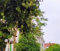 Gia đình cần bán gấp biệt thự đẹp đẳng cấp KDT Việt Hưng, Long Biên DT 234m2 tặng nội thất