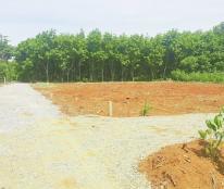 Siêu phẩm 6 lô đất nền diện tích lớn ven TT Hồ Xá, Thuộc Thôn Hòa Bình, Xã Vĩnh Hòa, Vĩnh Linh