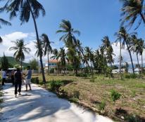 Bán 7 lô đất nền thổ cư Bắc Vân Phong, Khánh Hòa 220m2/lô ven biển giá tốt chính chủ