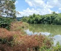Bán đất view hồ tuyệt đẹp tại xã Nhân Đạo, huyện Dăk R'Lấp, Đắk Nông