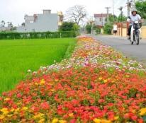 Bán nhanh lô đất dự án Green Park. Giữa trung tâm thành phố, nhiều tiện ích