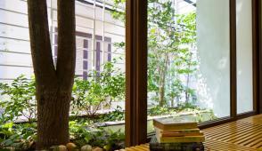 Ngôi nhà có ban công độc đáo cho cây xuyên qua