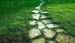 Những ý tưởng hay ho để có lối đi bằng đá sinh động cho sân vườn