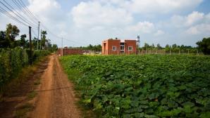 Ngôi nhà độc đáo giữa vùng quê Đồng Nai