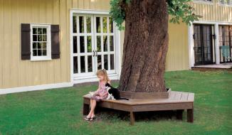 Ý tưởng trang trí sân vườn đơn giản mà đẹp